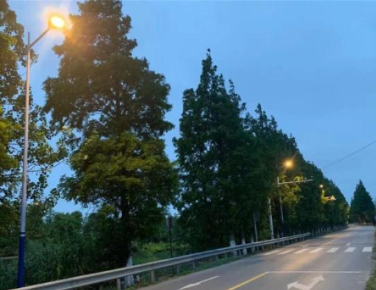 启东汇大线43盏路灯照亮民心