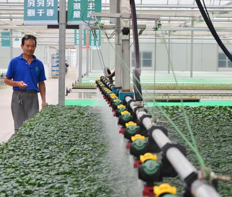 南通:金融活水润泽绿色乡村
