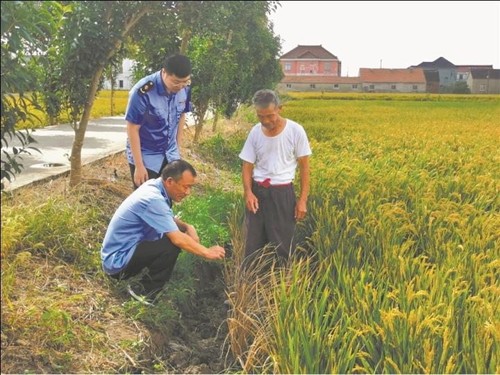 """不合格化肥坑惨种植户 如东市监为庄稼汉""""撑腰""""维权"""